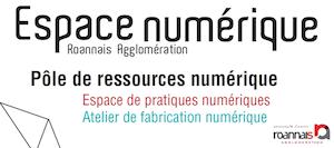 logo Espace Numérique Roannais